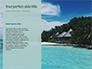 Beautiful Beach with Palm Trees slide 9
