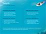 Marine Turtle slide 2