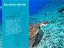 Marine Turtle slide 9