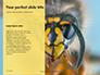 Wasp is Guarding its Nest Presentation slide 9