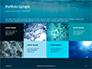 Underwater Lights Presentation slide 17