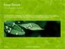 Green Tree Leaves in Sunlight Presentation slide 10