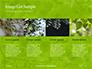 Green Tree Leaves in Sunlight Presentation slide 16