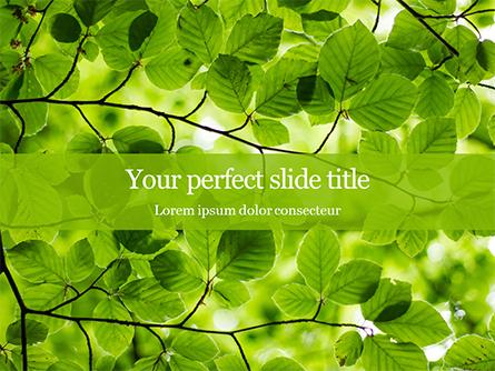 Green Tree Leaves in Sunlight Presentation Presentation Template, Master Slide