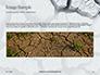 Deep Cracks in the Gray Land Presentation slide 10