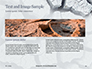 Deep Cracks in the Gray Land Presentation slide 14