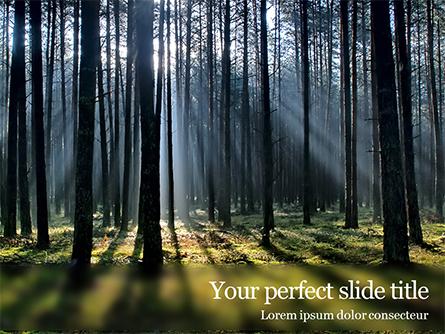 Spruce-Fir Forest Presentation Presentation Template, Master Slide