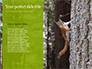 A Squirrel Gnaws a Nut Presentation slide 9