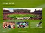 Green Field for Sport Games Presentation slide 13