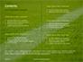 Green Field for Sport Games Presentation slide 2