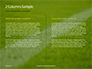 Green Field for Sport Games Presentation slide 5