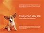 Cute Puppy Portrait on Orange Background Presentation slide 1