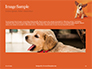 Cute Puppy Portrait on Orange Background Presentation slide 10