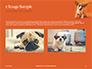 Cute Puppy Portrait on Orange Background Presentation slide 11