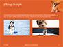 Cute Puppy Portrait on Orange Background Presentation slide 12