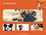 Cute Puppy Portrait on Orange Background Presentation slide 13
