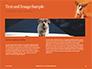 Cute Puppy Portrait on Orange Background Presentation slide 14