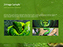 Emerald Python Coiled on Tree Presentation slide 12