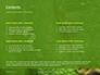 Emerald Python Coiled on Tree Presentation slide 2