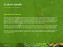 Emerald Python Coiled on Tree Presentation slide 4