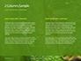 Emerald Python Coiled on Tree Presentation slide 5
