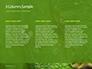 Emerald Python Coiled on Tree Presentation slide 6