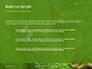 Emerald Python Coiled on Tree Presentation slide 7