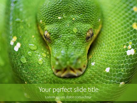 Emerald Python Coiled on Tree Presentation Presentation Template, Master Slide