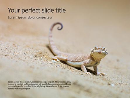 Lizard on the Sand Presentation Presentation Template, Master Slide
