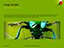 Lily Beetle Sitting on a Green Leaf Presentation slide 10