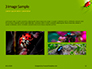 Lily Beetle Sitting on a Green Leaf Presentation slide 12