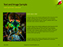 Lily Beetle Sitting on a Green Leaf Presentation slide 15