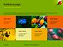 Lily Beetle Sitting on a Green Leaf Presentation slide 17