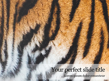 Close View of Tiger Skin Presentation Presentation Template, Master Slide
