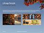 Maple Tree Branch in Autumn against Blue Sky Presentation slide 12