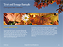 Maple Tree Branch in Autumn against Blue Sky Presentation slide 14