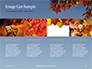 Maple Tree Branch in Autumn against Blue Sky Presentation slide 16