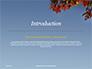 Maple Tree Branch in Autumn against Blue Sky Presentation slide 3
