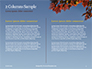 Maple Tree Branch in Autumn against Blue Sky Presentation slide 5
