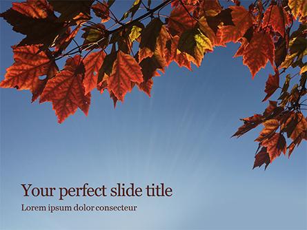 Maple Tree Branch in Autumn against Blue Sky Presentation Presentation Template, Master Slide