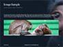 Two Gray Primates Presentation slide 10