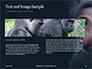 Two Gray Primates Presentation slide 14