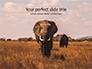 African Elephants Presentation slide 1