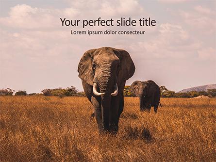 African Elephants Presentation Presentation Template, Master Slide