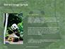 Cute Panda Bear is Sitting on Tree Branch Presentation slide 15