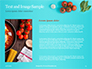 Cooking Pot and Frying Pan with Tomatoes Presentation slide 15