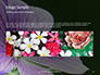 Violet Malva Flower Closeup Presentation slide 10