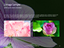 Violet Malva Flower Closeup Presentation slide 11