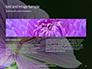 Violet Malva Flower Closeup Presentation slide 14