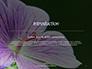 Violet Malva Flower Closeup Presentation slide 3